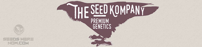 The-Seed-kompany