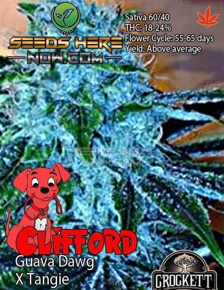 crockett-family-farms-clifford