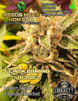 crockett-family-farms-lemon-banana-sherbet-front