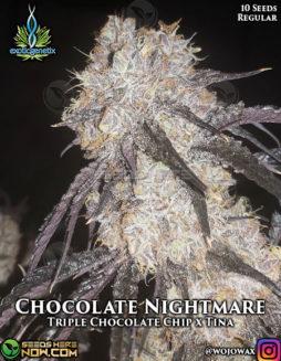 exotic-genetix-chocolate-nightmare