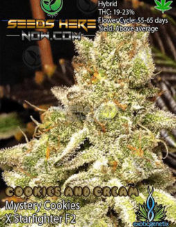 exotic-genetix-cookies-cream