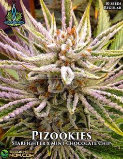 exotic-genetix-pizookies