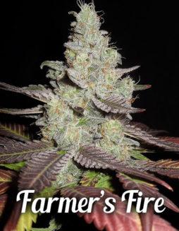farmers-fire