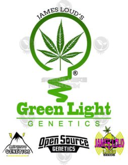 green-light-genetics
