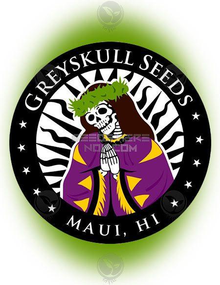 greyskull-seeds