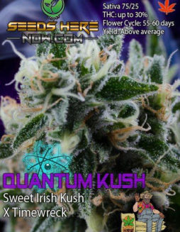 homegrown-natural-wonders-quantum-kush