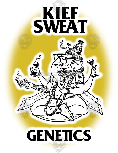 Kiefsweat Genetics