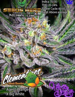 la-plata-labs-colorado-clementines