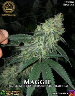 Buy_marijuana_seeds
