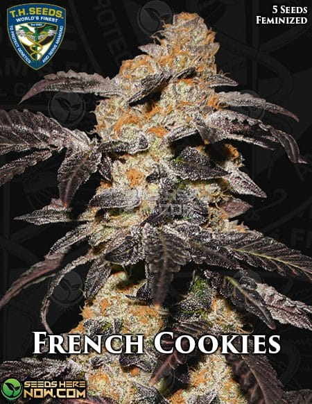 th-seeds-french-cookies-1