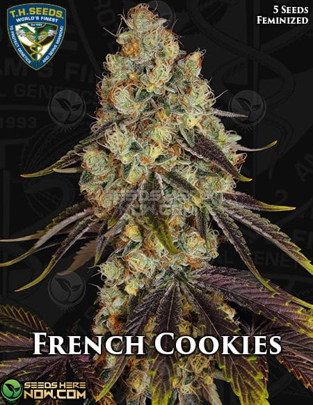 th-seeds-french-cookies-2