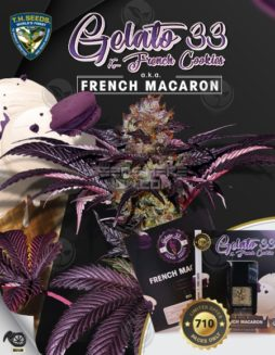th-seeds-french-macaron-1