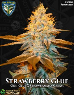 th-seeds-strawberry-glue-1