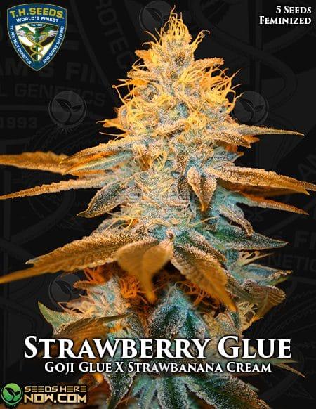 th-seeds-strawberry-glue-1
