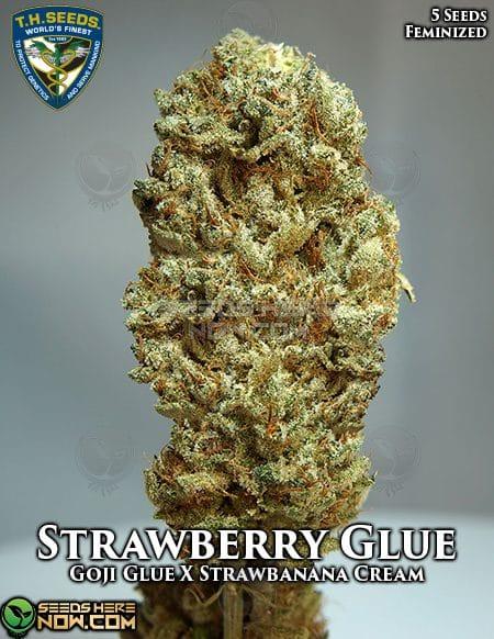 th-seeds-strawberry-glue-2