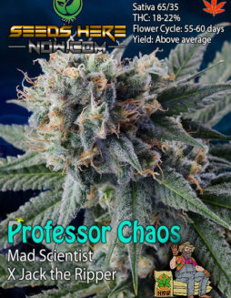 homegrown-natural-wonders-professor-chaos