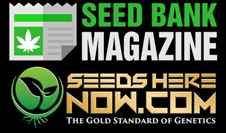 Seeds Here Now Article – Seed Bank Magazine