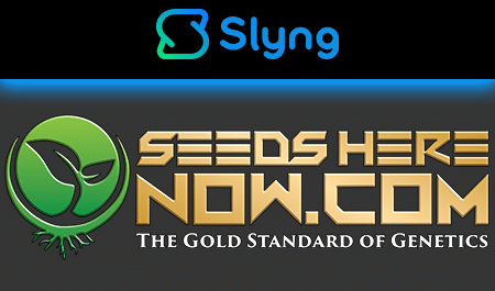 Seeds Here Now | More Than Just Seeds