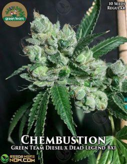 green-team-genetics-chembustion
