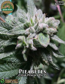 green-team-genetics-pieabetes