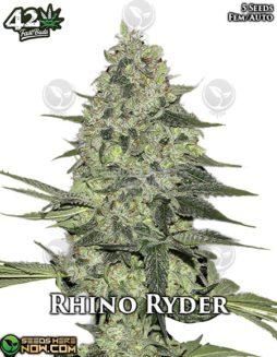 fast-buds-rhino-ryder