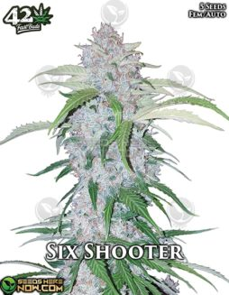 fast-buds-six-shooter