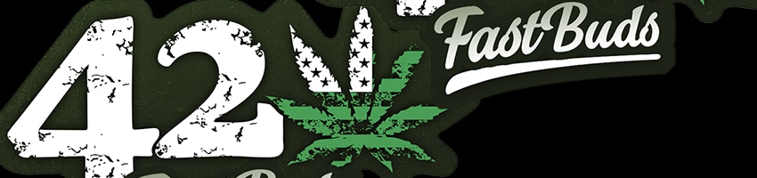 fast-buds_banner