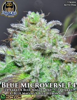 night-owl-seeds-blue-microverse-f4