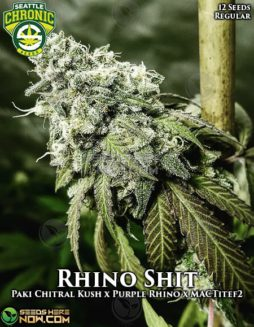 seattle-chronic-seeds-rhino-shit