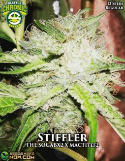 seattle-chronic-seeds-stiffler