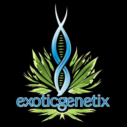 Exotic-Logo-Transparency-Tile
